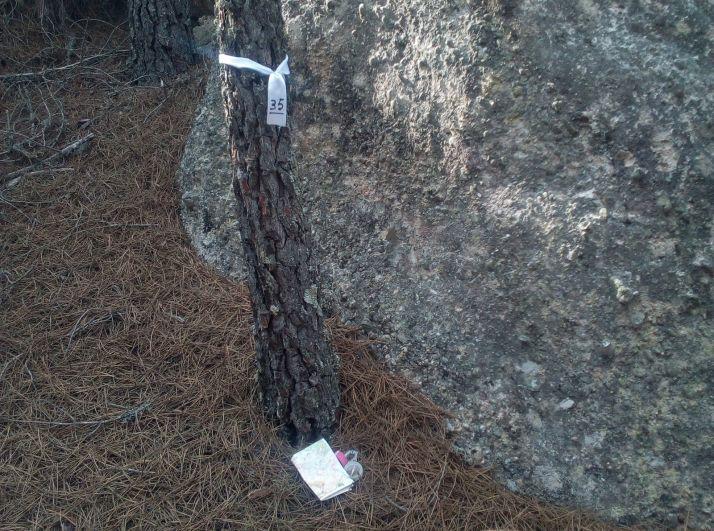 Roca con cinta blanca (a modo de baliza. /Roberto Vega