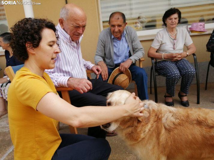 Canes y abuelos, una entrañable unión