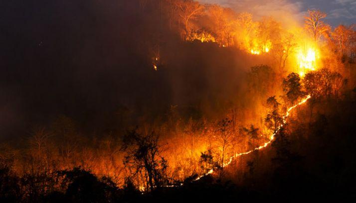 Foto 1 - Se declara la alarma por riesgo de incendios hasta el día 25