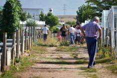 •El concejal de Acción Social, Eder García, ha visitado hoy a los integrantes del campus de cocina saludable que ha incluido en el programa una jornada en los huertos municipales. Ayuntamiento de Soria