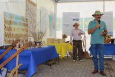 Fiesta del Pan en San Pedro Manrique. SN