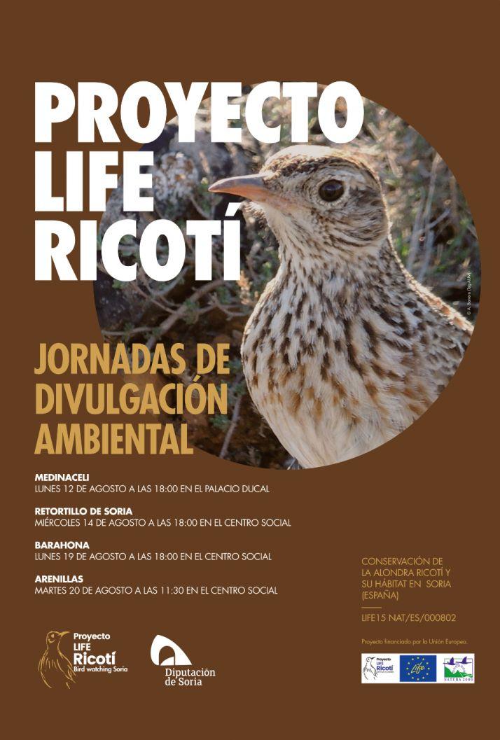 Foto 2 - El lunes arrancan en Medinaceli las charlas provinciales sobre la alondra ricotí