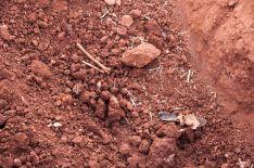Foto 3 - Abiertas las diligencias por los asesinatos de La Riba de Escalote en la Guerra Civil