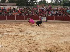Foto 4 - San Esteban, de fiestas