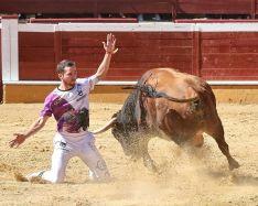 Foto 4 - J. P. Villanueva 'Aguilucho', campeón del Concurso Nacional de Recortes de Soria