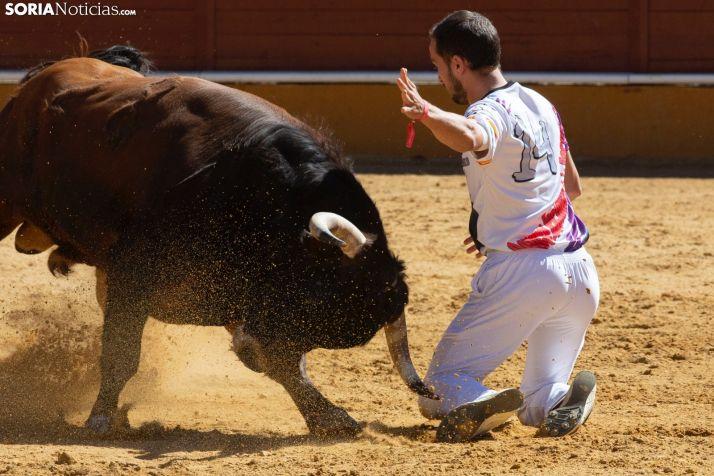 J. P. Villanueva 'Aguilucho', campeón del Concurso Nacional de Recortes de Soria