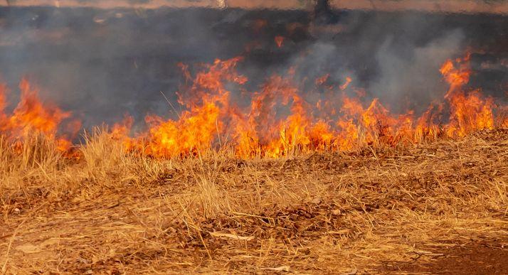 Foto 1 - Un incendio forestal en Tajahuerce calcina 2.800 metros de terreno agrícola