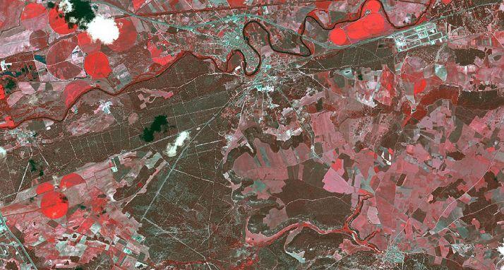 Imagen del satélite Pleiades en la que se observan masas de pino piñonero incluidas en el estudio al sur de Valladolid. /Ángela Blázquez