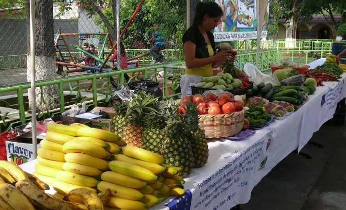 Un puesto de venta de frutas y verduras en Tejutepeque (El Salvador), impulsado por Tierra sin Males. /TSM)