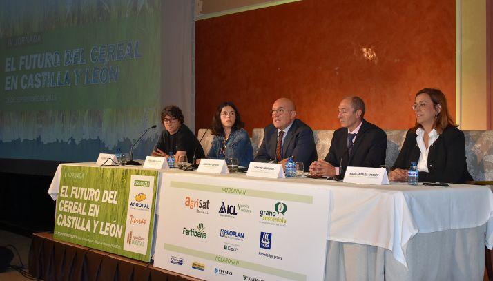 Imagen de la apertura de la VI Jornada 'El futuro del cereal en Castilla y León'. /Jta.