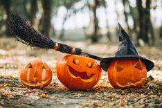 Camaretas se prepara para un Halloween de miedo
