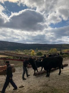 Foto 5 - La gastronomía y la tradición carretera vuelven a darse la mano gracias a la Serrana Negra