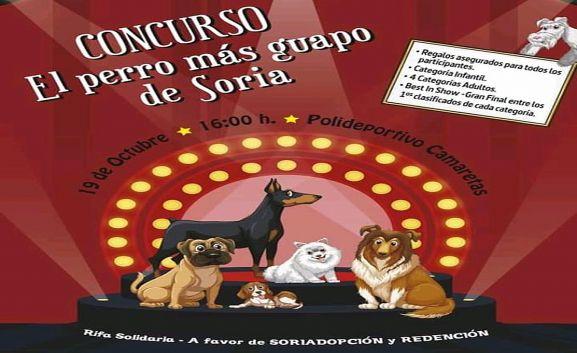 El cartel anunciador del concurso.