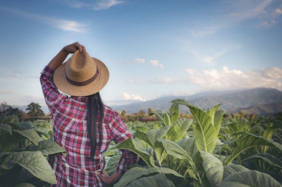 Mujer agricultora en un campo.