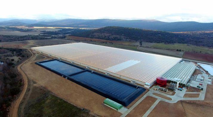 Vista aérea del invernadero de Aleia en Garray.