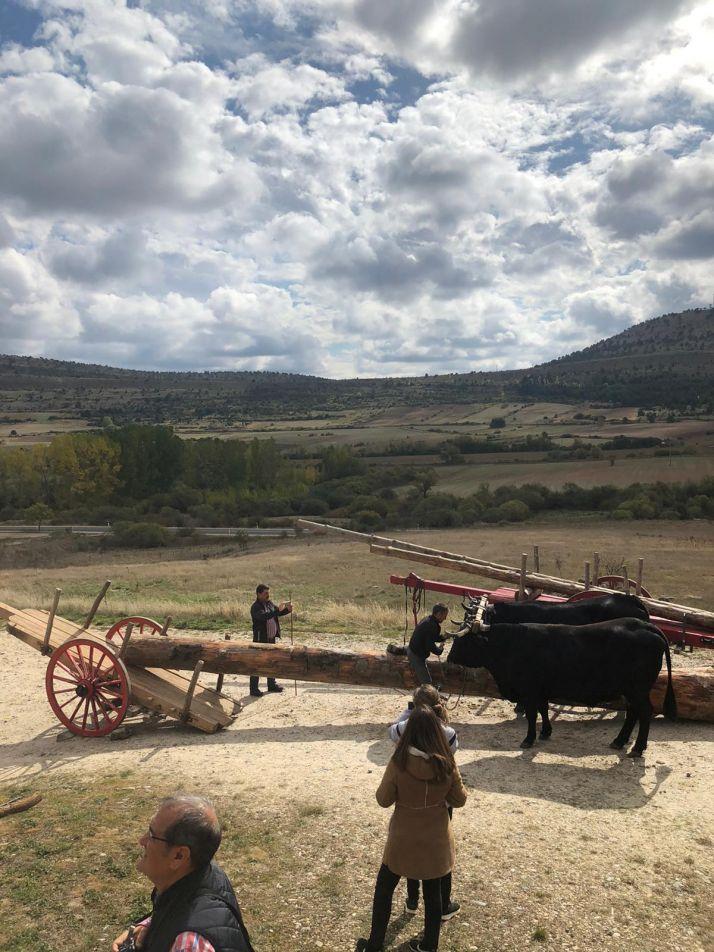 Foto 2 - La gastronomía y la tradición carretera vuelven a darse la mano gracias a la Serrana Negra
