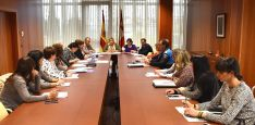 Una imagen de la Comisión territorial sobre violencia de género este martes. /Jta.