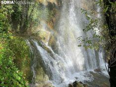 Foto 3 - La Toba: el medidor de las lluvias en Soria