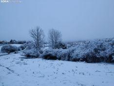 Alrededores de Covaleda después de las nieves. /Rosaura Mateo