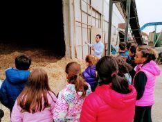 Escolares vistan las instalaciones y sala de calderas con intercambiador.