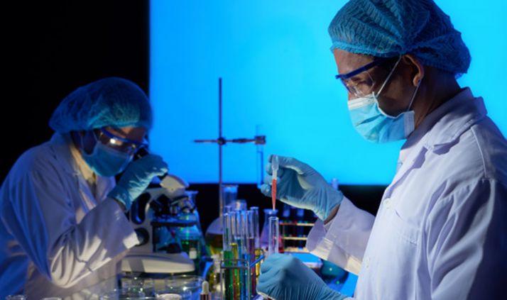 Foto 1 - Arranca la Semana de la Ciencia en el Campus y en la provincia