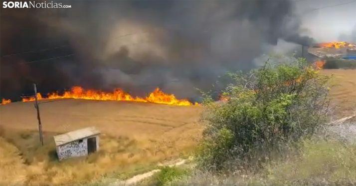 Una imagen del incendio en San Esteban de Gormaz que calcinó 40 hectáreas. /SN