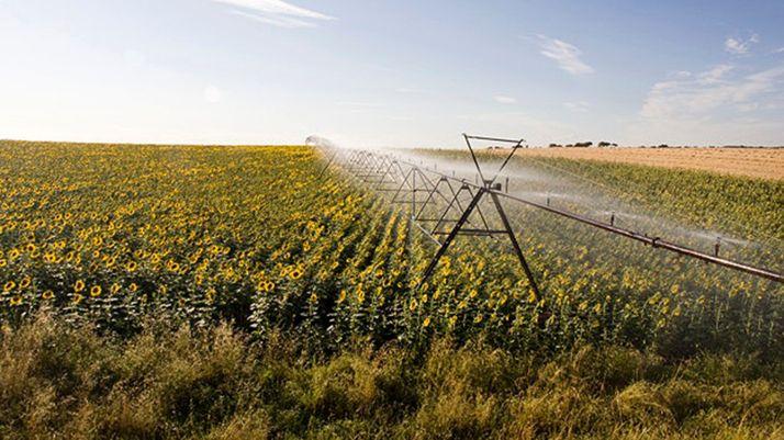 Foto 1 - El 'Plan de Impulso de Infraestructuras Agrarias de Interés General' prevé habilitar 30.000 hectáreas de regadío esta legislatura