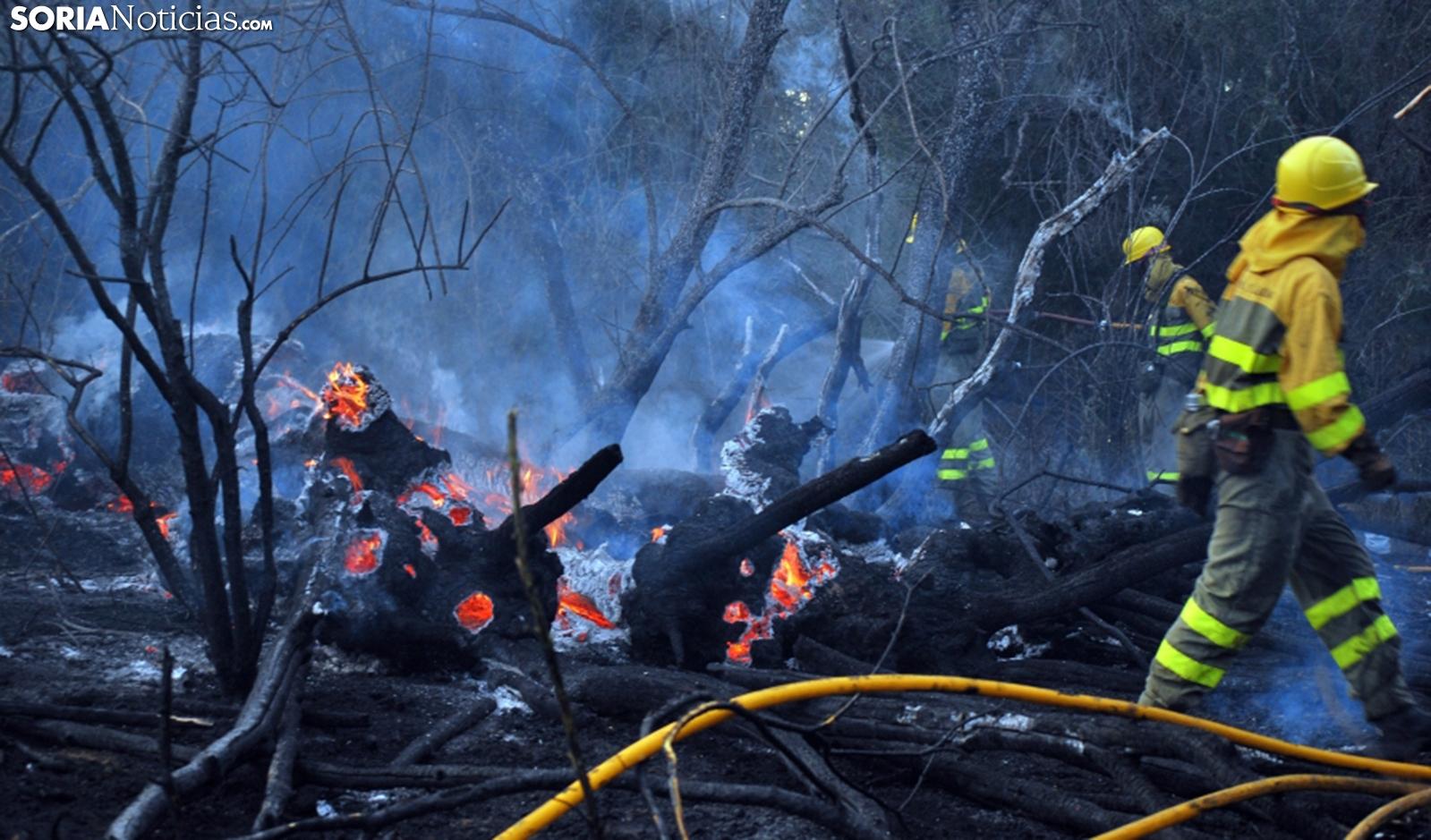 Labores de extinción de un incendio forestal en la provincia. /SN