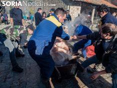 Una imagen de la jornada de sábado en Molinos. /SN