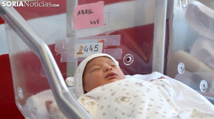 Abril, primer bebé soriano de 2019.