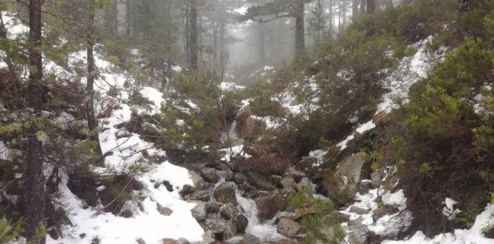Deshielo en la sierra de Urbión, en Duruelo de la Sierra. /Agustín Sandoval.