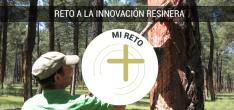 Foto 2 - El sector resinero busca reinventarse con una tormenta de ideas