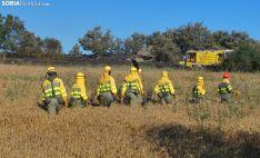 Operativo anti incendios de la Junta en un siniestro forestal en la provincia. /SN