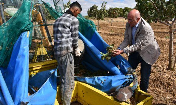 El consejero en un cultivo de pistacho este jueves. /Jta.