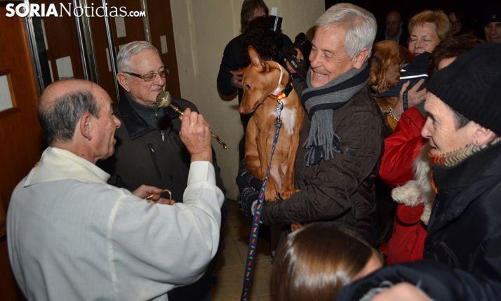 Foto 1 - Este viernes, la bendición de animales en Santa Bárbara