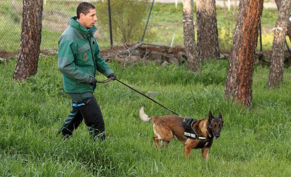 Un agente con su perro.