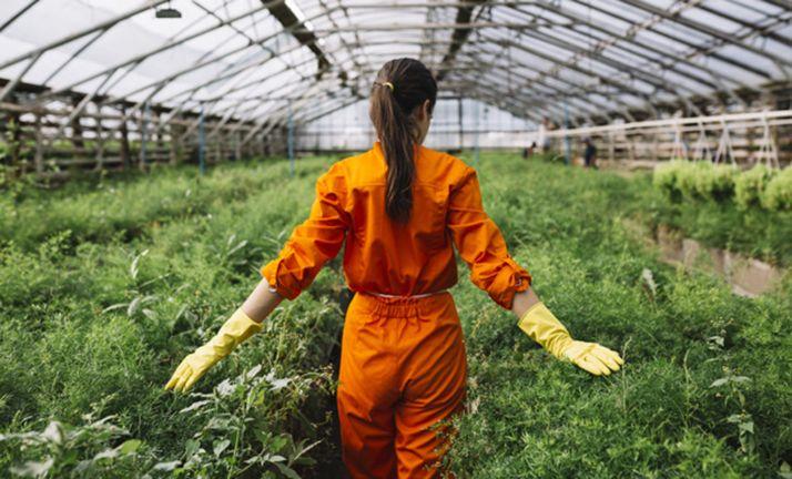 Foto 1 - Arranca la elaboración del Plan de Agricultura y Ganadería Joven