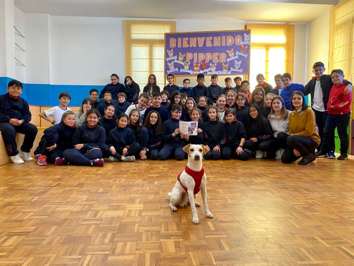Pipper, el perro 'influencer' visita el colegio Trilema Soria