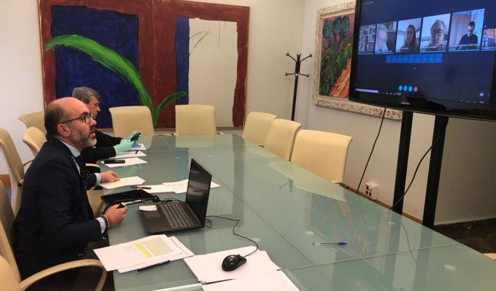 El consejero en la vídeo conferencia mantenida con el Consejo de Turismo.