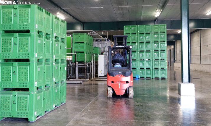 Instalaciones de almacenaje de una industria agroalimentaria soriana. /SN
