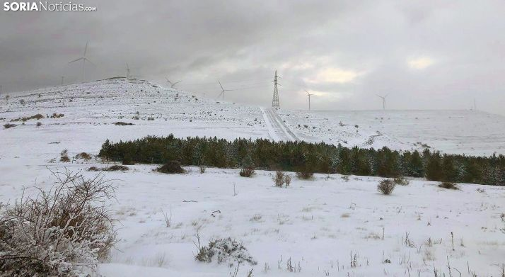 Una imagen de las proximidades de Oncala, en Tierras Altas, hoy martes. /SN