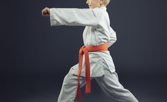 Foto 1 - Este domingo, el Provincial de judo en Los Pajaritos