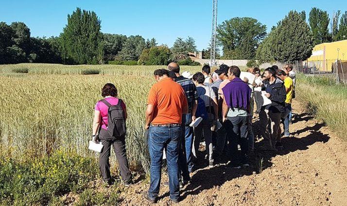 La Asociación Soriana Tierras del Cid en una jornada de agroecología