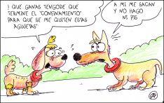 Foto 4 - El humor de Quique Bastida no descansa en cuarentena