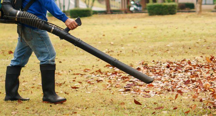 Trabajador limpiando las hojas secas.