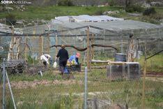 Alivio del confinamiento en Golmayo. /EM