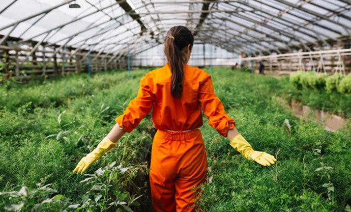Foto 1 - Las empresas agrarias, silvícolas y de alimentación se informan en FOES en la nueva convocatoria de ayudas de la Junta