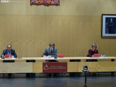 Primer pleno presencia poscovid en el Ayuntamiento de Soria.