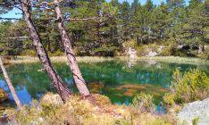 La Laguna Verde, en Vinuesa. /Cesefor