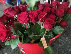 Preparación de las rosas en Covaleda.